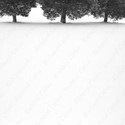 """The Last Day of Winter"" Richard Calvo Photography"