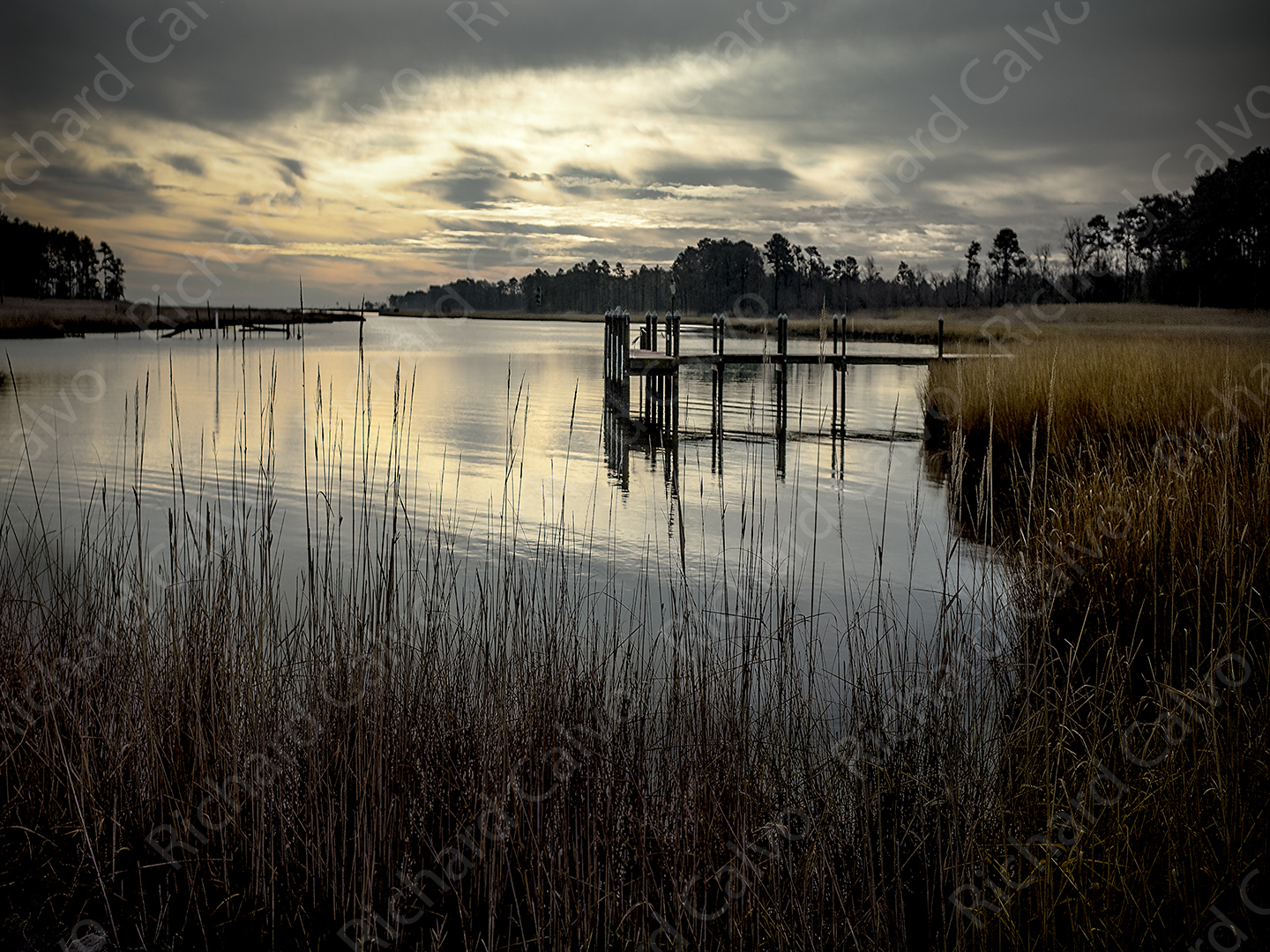 """Love Creek, Long Neck, Delaware"" by Richard Calvo"