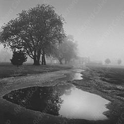 """Normandy Morning I"" Richard Calvo Photography"
