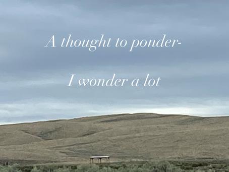 I wonder a lot