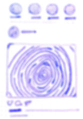 IMG_0384%20copy-Recovered%20copy%204_edi
