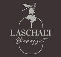 laschalt-logo-farbe.jpg