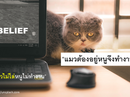 """แนวคิด """"แมวไม่อยู่หนูไม่ทำงาน"""" จะบริหารคนในยุคปัจจุบันได้อย่างไร – Management 3.0"""