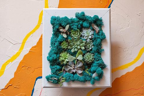 Calm Succulent Wall Frame, Blue, Custom, One of a Kind, Crystals, Magic