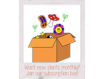 subscription001.png