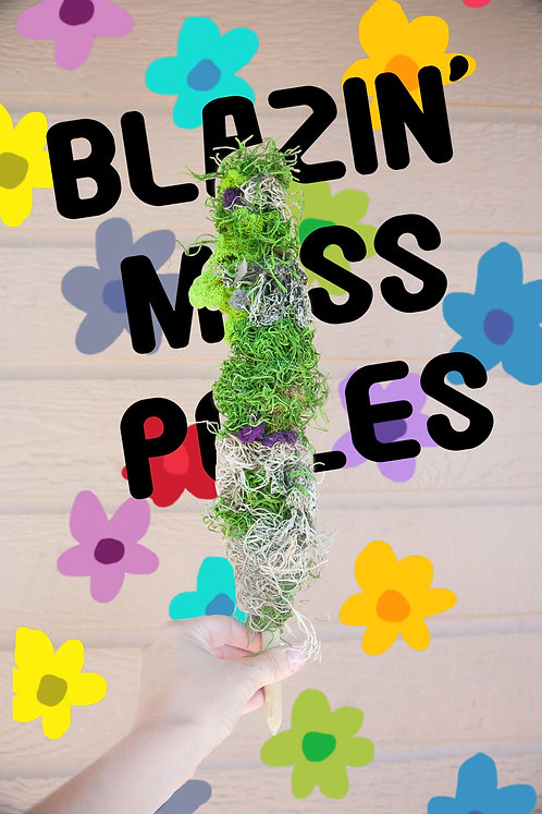 Unique and Beautiful Moss Pole for Climbing Houseplants, Customizable