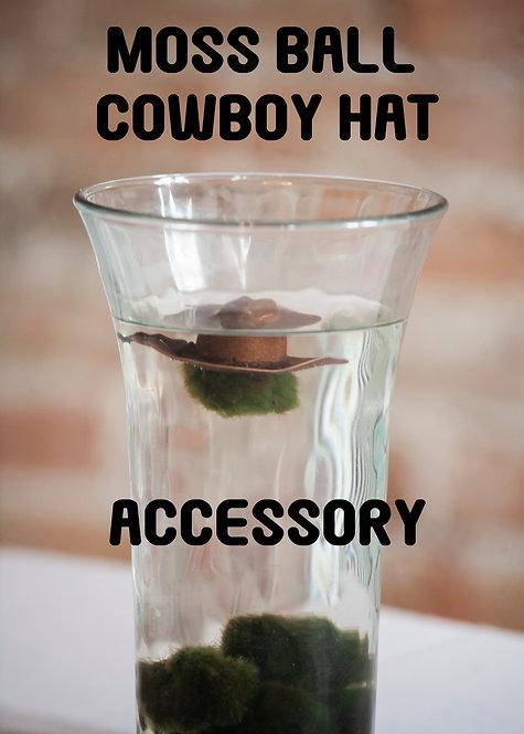 Moss Ball Cowboy Hat, Howdy, Plant Decor, Adorable, Unique