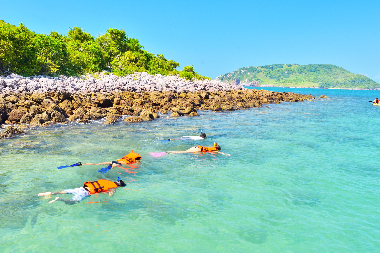 Mazatlan Private Snorkeling
