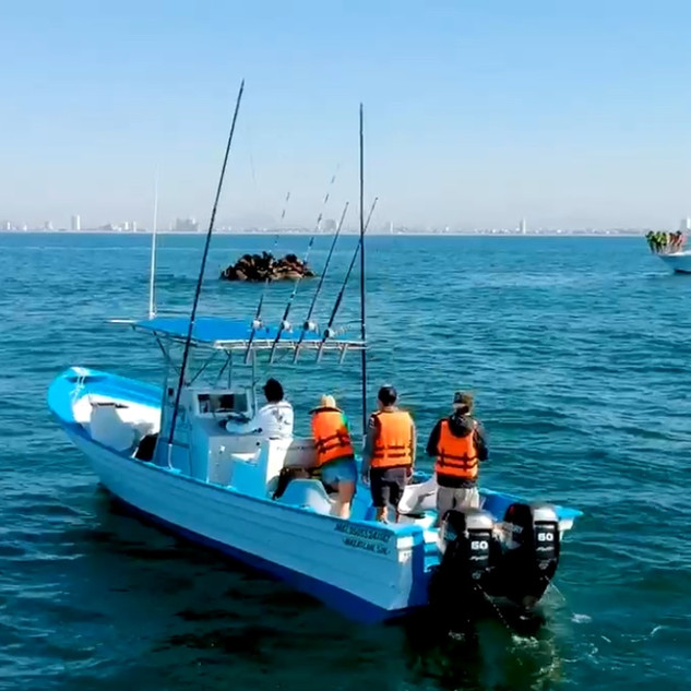 mazatlan fishing charters