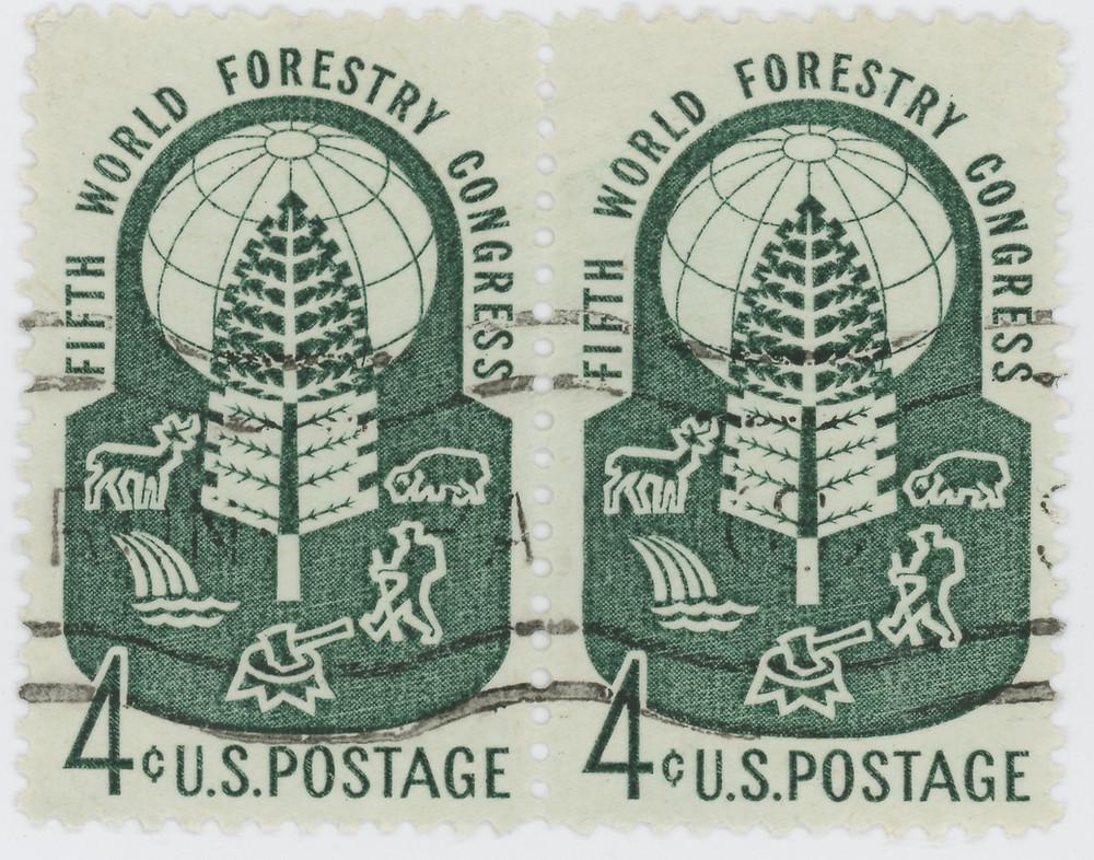 World Forestry Congress 1_edited.jpeg