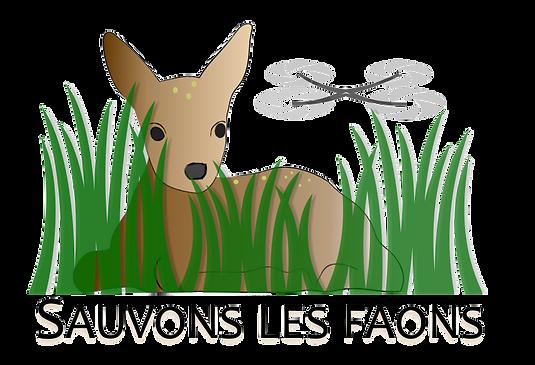 Logo SVF Couleur officiel.png