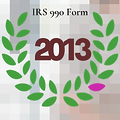 IRS 990 Form 2013.png