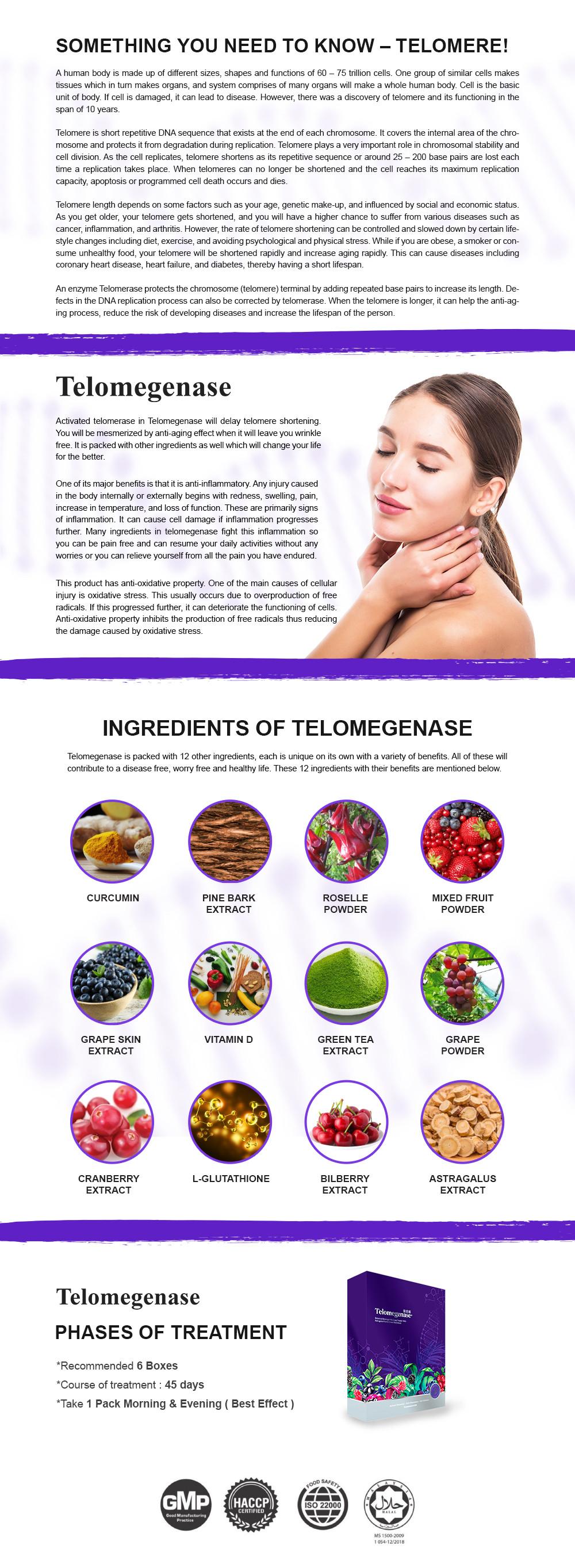 website telo product design.jpg