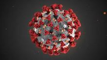 Coronavirus - Vorübergehende Schließung Lagerverkauf ab Mittwoch, den 17. März 2020