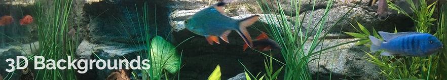 Aquarium Backgrounds