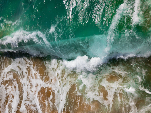 McTaggart Grant Lawyers makes a splash in the Gold Coast legal services market