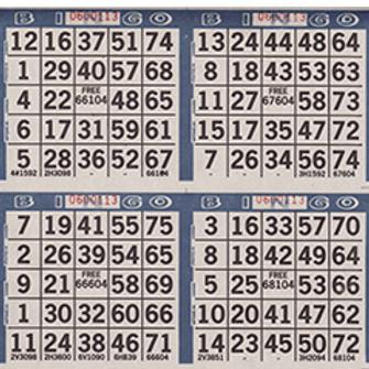 Carte de bingo 6 carreaux