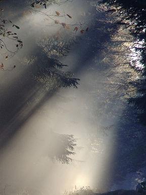 sunbeam-76825_edited.jpg