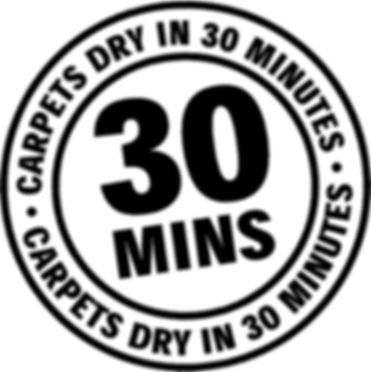 Carpets Dry in 30.jpg