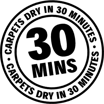 Carpets Dry in 30.jpg