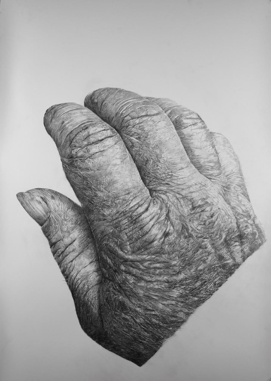 Mijn hand, 100x70cm, potlood