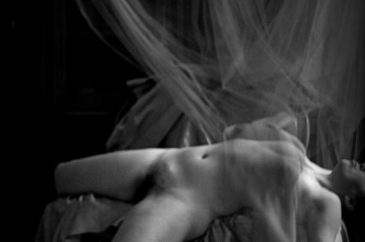 """""""Lo Stato sociale"""" cod 9586 Selfportrait Ilaria Facci"""