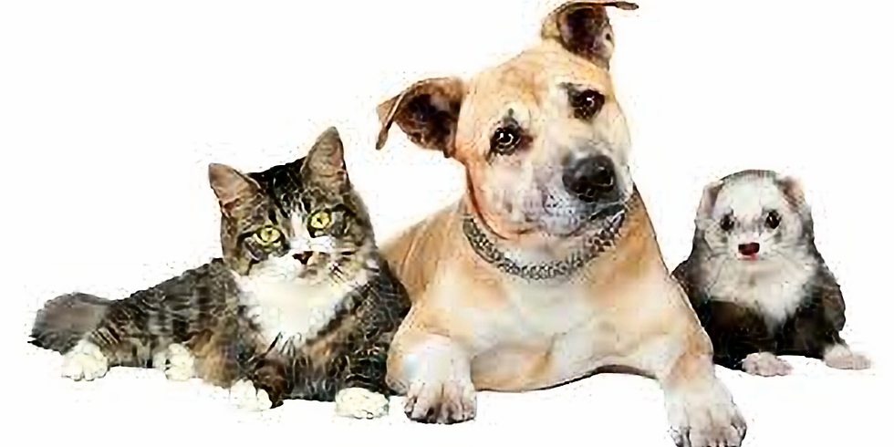 Windham NH Rabies Clinic