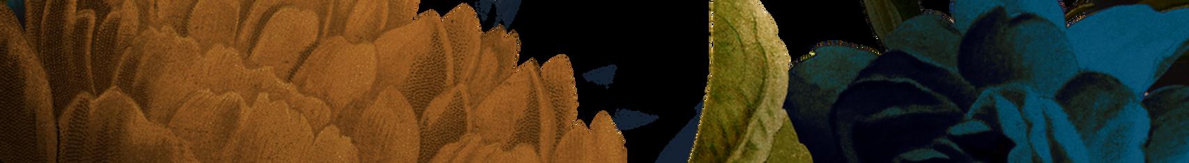 botanical_group3.png