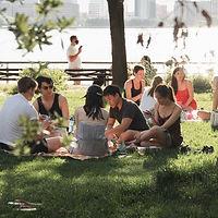 Picnics in the park.jpg