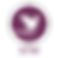 Thumbnail logo transparent_STM_colour.pn