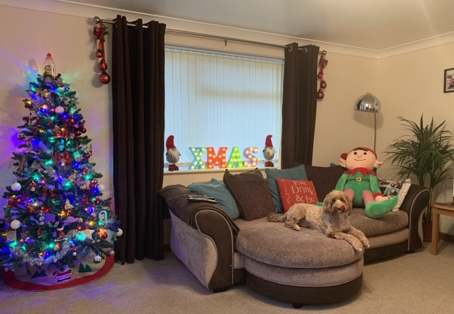 Landscape shot of Ross's living room. Christmas tree lit up on the left hand corner. Ross's dog sat on the sofa next to a massive elf teddy. Xmas lights decorated around the windows