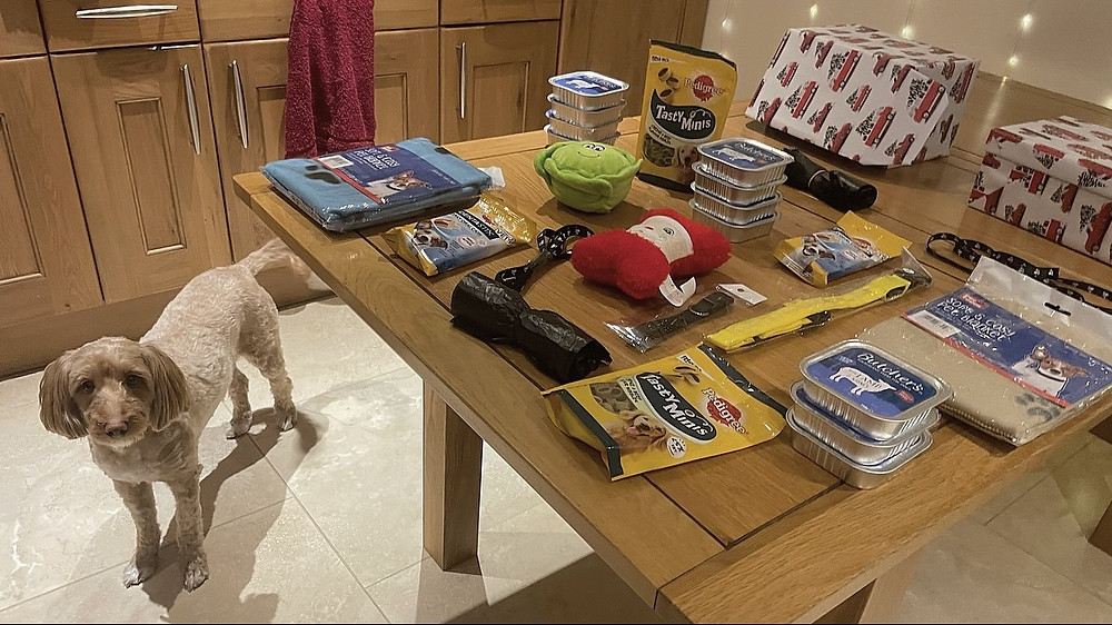 Ralph stood below Ross's kitchen table, with all the shoebox contents displayed above