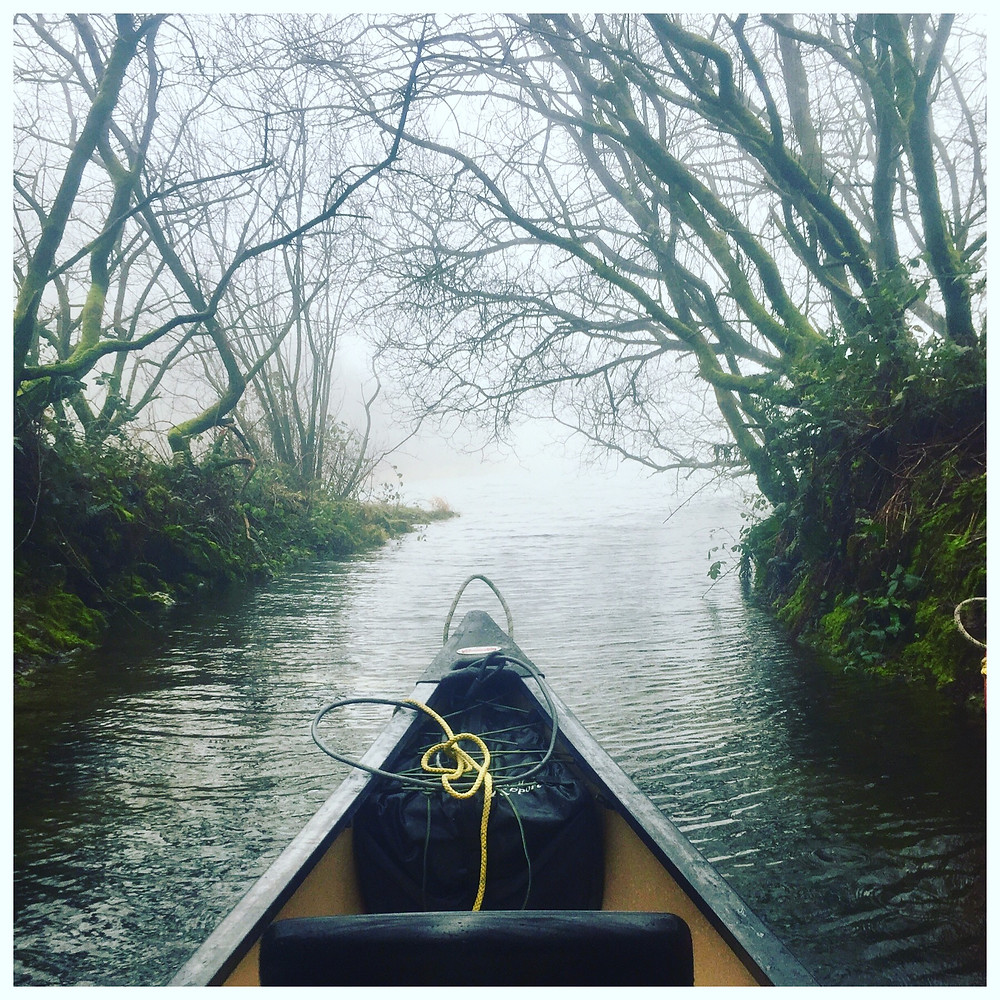 Photo taken on the lake, from the canoe. Going through some woodland, misty skies