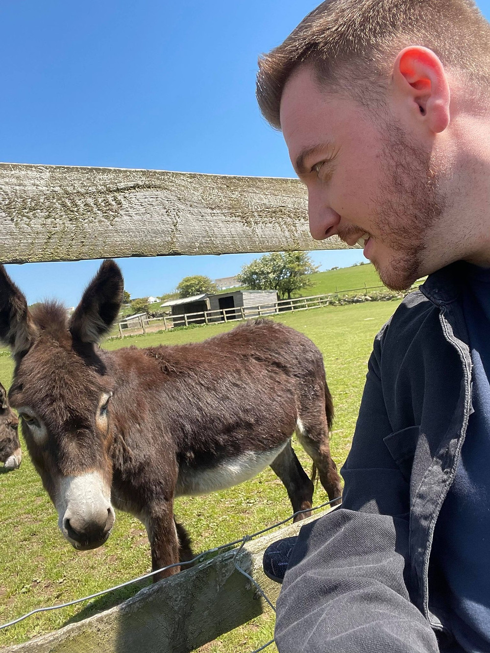 Selfie of Ross staring face to face with a donkey through the field barrier