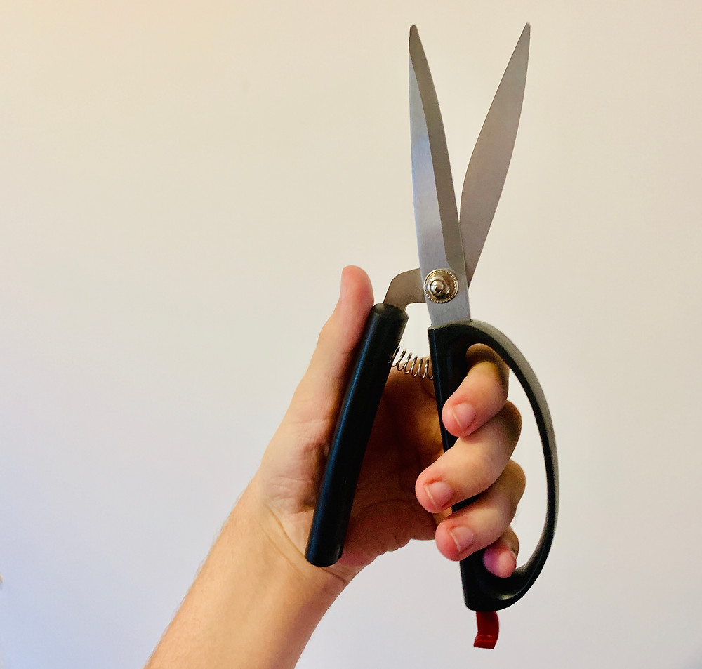 Kitchen shear, large black scissors