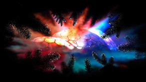 Shadows & Light: Eden Project VLOG