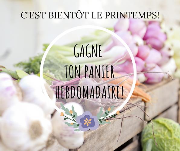 C'EST LE PRINTEMPS! (1).png