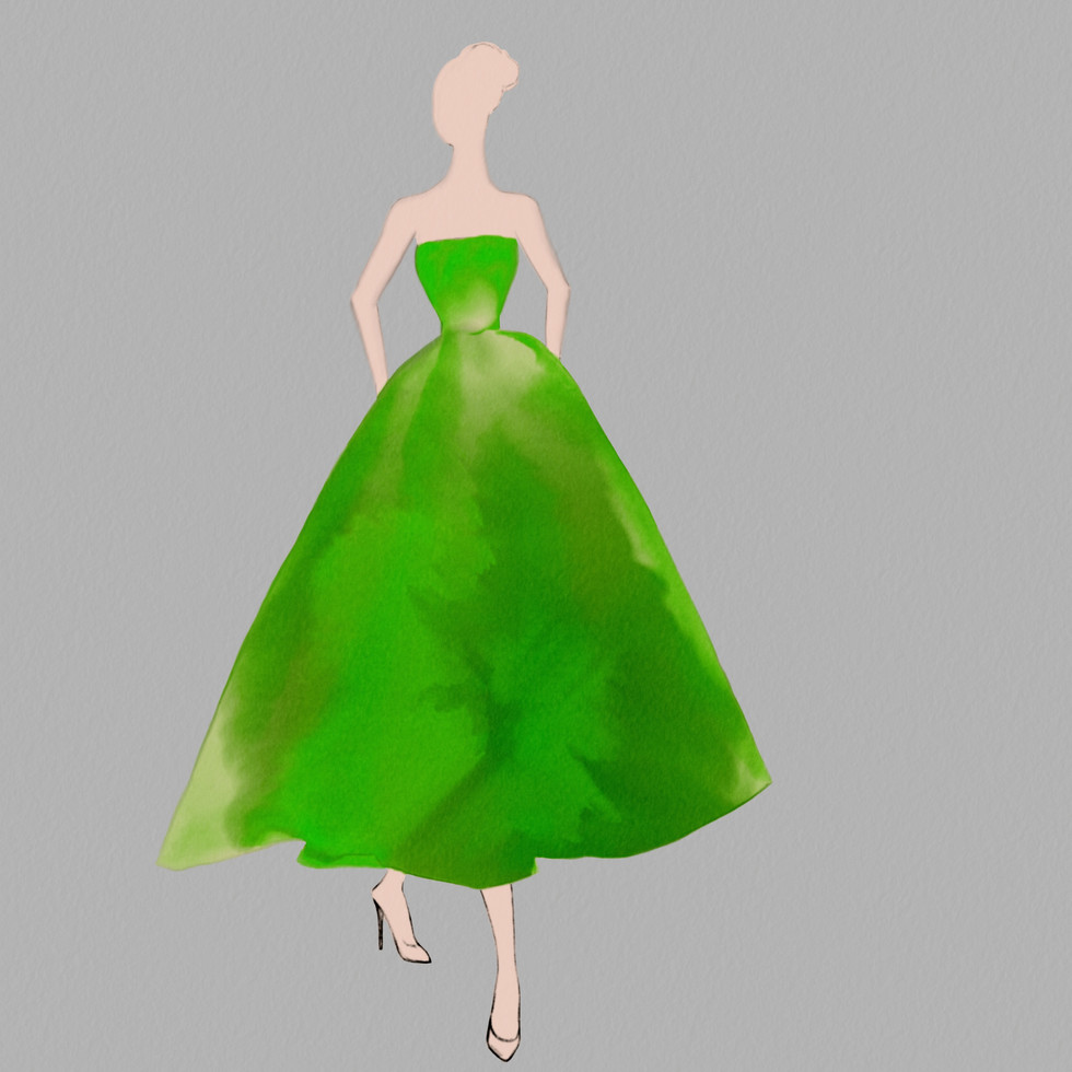 Dior Gown Organza