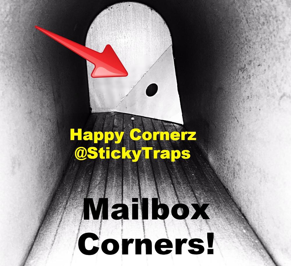 "<img src=""stickytraps.jpg"" alt=""diy sticky trap in an upper corner eliminating pests""> @stickytraps roach traps"