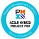 agile hybrid.png