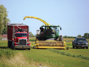 Great conditions for harvesting crops
