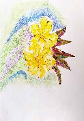 Blossom Flowers 5