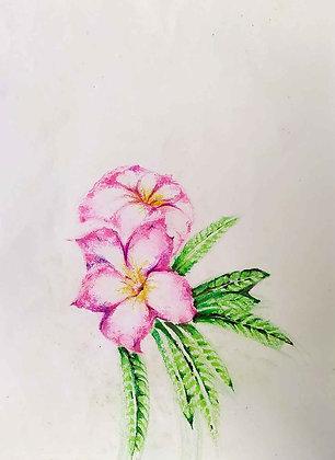 Blossom Flowers 4