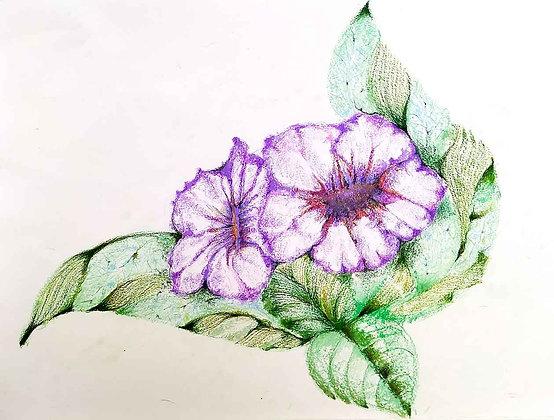 Blossom Flowers 2