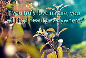 bush is to love nature