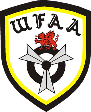 WFAA Logo.png