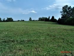 Red Hill Farm Boarding