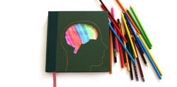 Brain Sketchbook2