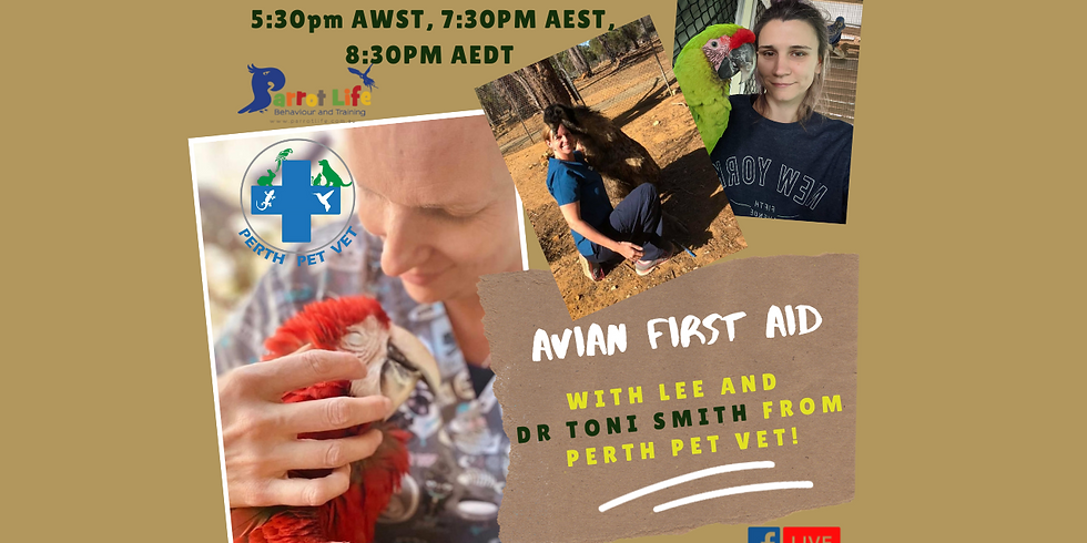 AVIAN FIRST AID - LIVE Q+A with Dr Toni Smith