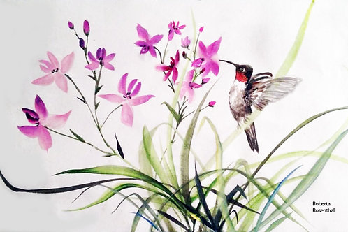 Print of Hummingbird and Orchid Print 8x 10